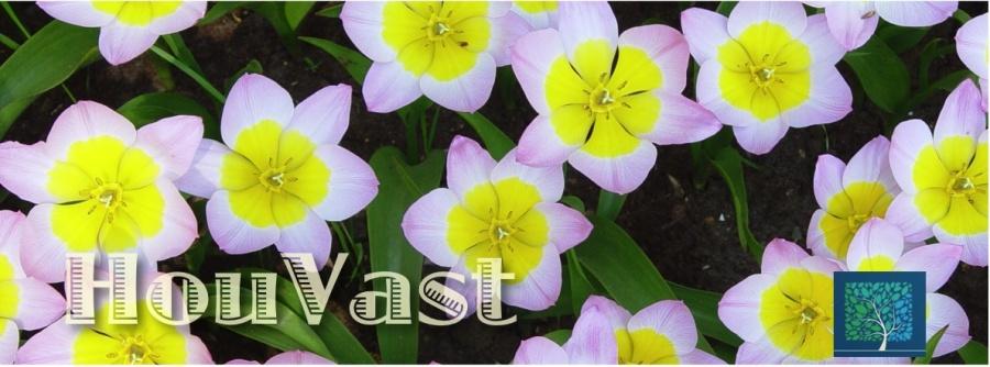 houvast banner bloemen